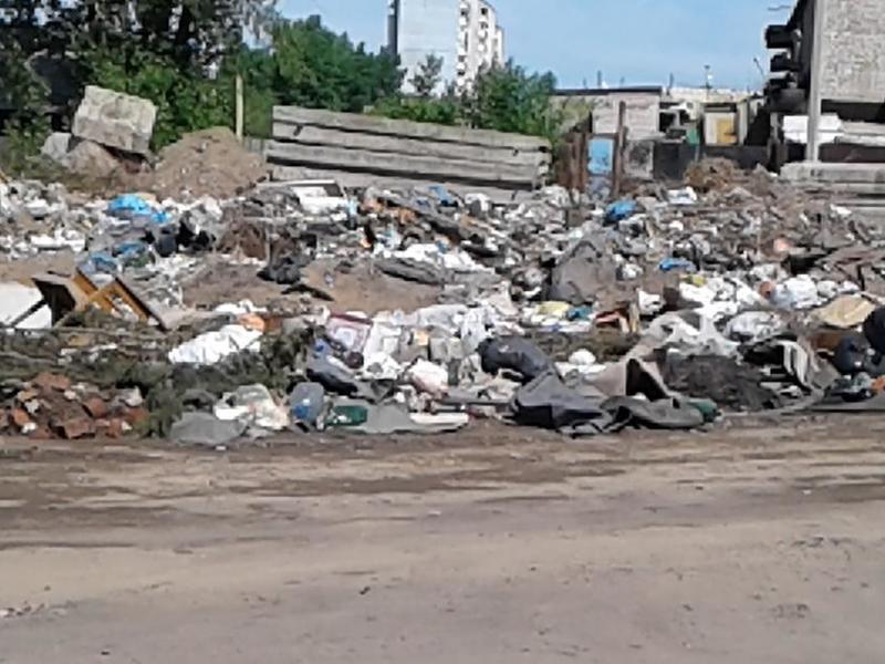 Жданова - Кузнецову: Был разговор о ликвидации свалок в Чите до 29 июня