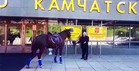 Камчатский депутат прискакал на сессию верхом на мерине (фото, видео)