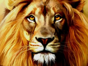 Депутат Госдумы вступился за льва