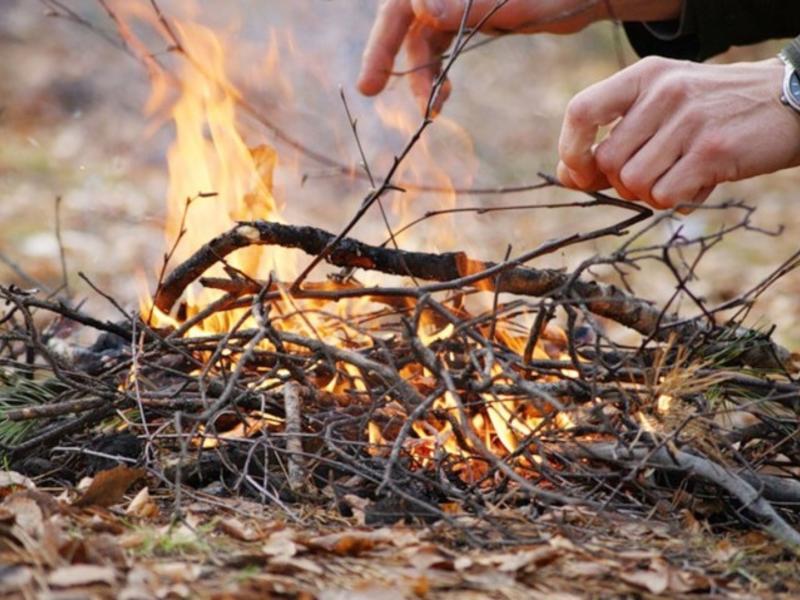 Более 10 млн р штрафов заплатили сибиряки за нарушения в пожароопасный период
