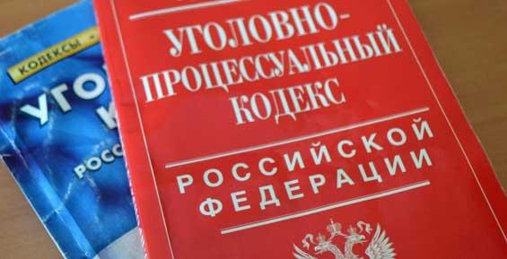 На Камчатке женщина попала под статью за уклонение  от уплаты алиментов
