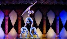 Цирковое представление стоило министру развлечений Саудовской Аравии должности