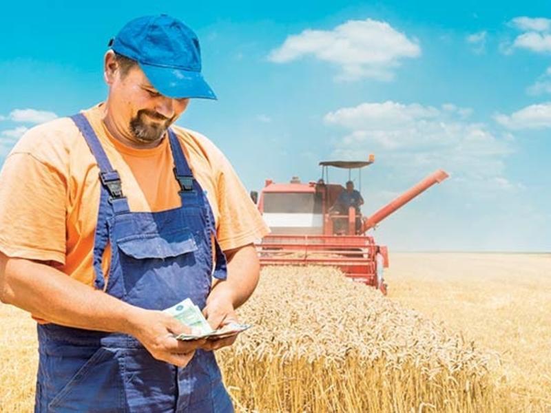 Около 112 млн р грантовой поддержки получили начинающие фермеры Забайкалья