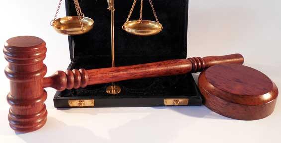 На Камчатке вынесли приговор по делу о гибели двух работников свинокомплекса
