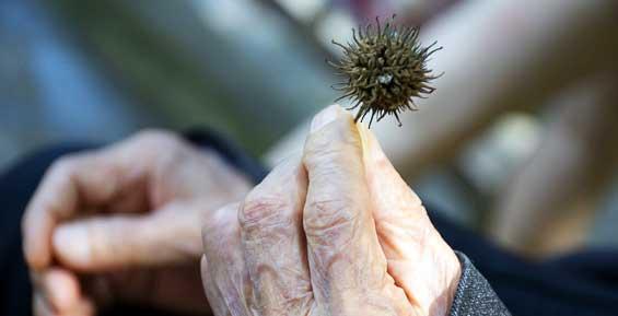 Опрос: камчатцы единодушно высказались против повышения пенсионного возраста