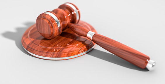 Жителю Камчатки ограничили свободу за езду с поддельными правами