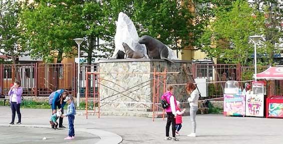 В Петропавловске у фонтана на 6-м километре откроют памятник семье сивучей