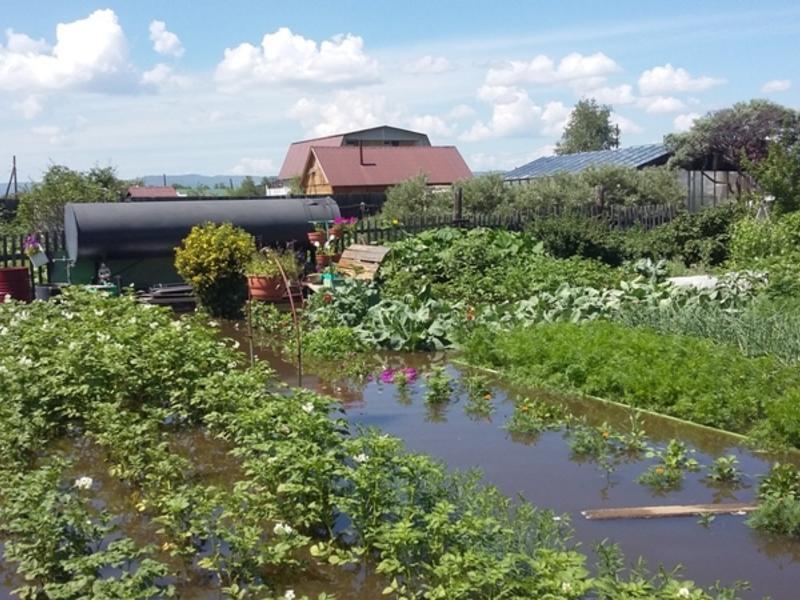 Предварительный ущерб сельхозпредприятиям Забайкалья составил 15,5 млн р