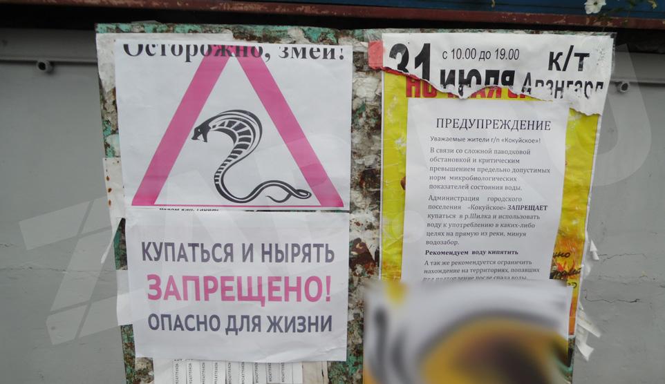 Листовки о распространении змей и запрете купания появились в Сретенском районе
