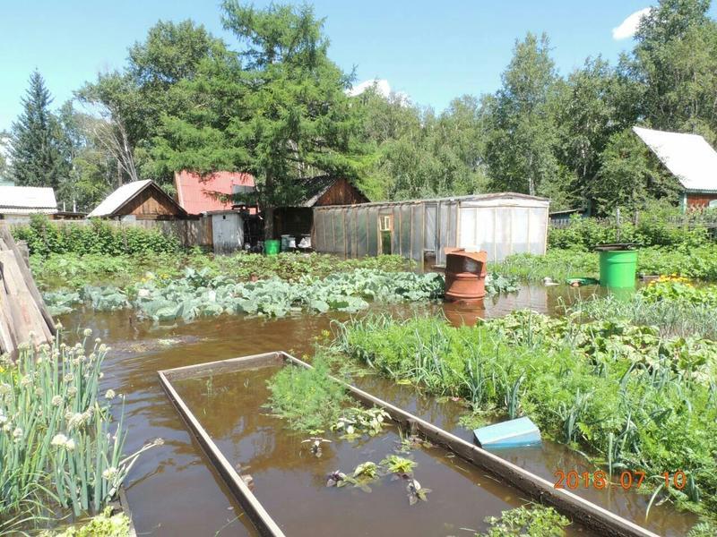 Более 500 заявок рассмотрел Минсельхоз края по ущербу от наводнения