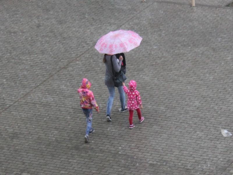 Непродолжительные дожди будут идти в Забайкалье до 28 июля