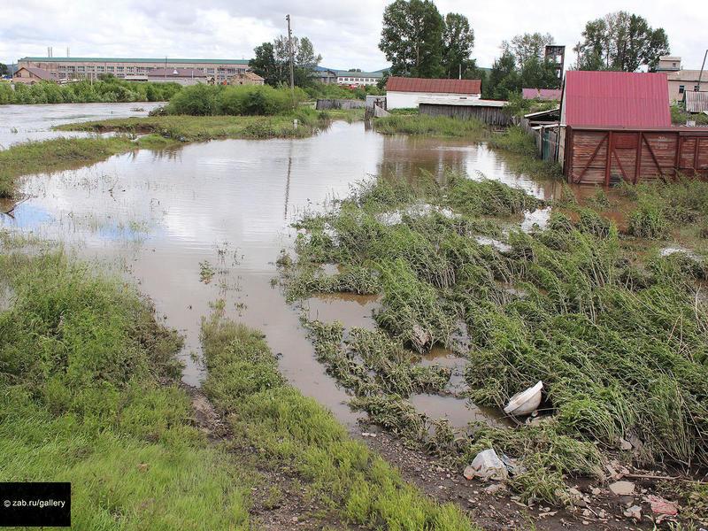 Минсельхоз края стал отслеживать состояние скотомогильников из-за наводнения