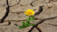 Роспотребнадзор: как спастись от жары