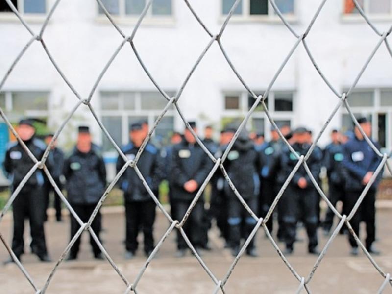 ФСИН рассказала о самых популярных видах преступлений за последние 5 лет