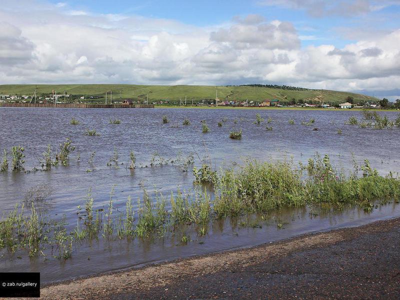 Жданова о наводнении в Шилке: «Вот и получаем последствия золотодобычи»