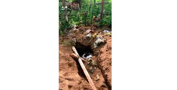 На Камчатке медведь раскопал могилы на кладбище (видео)