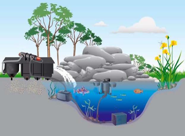 Чистые пруды от Genesis на миг нас сделаю счастливей