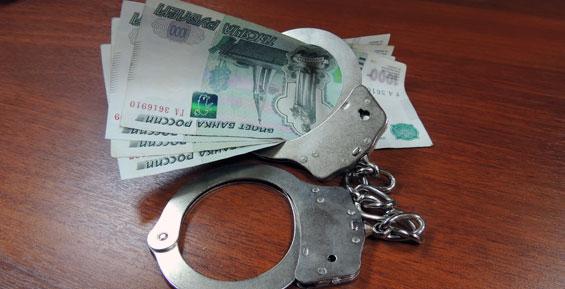 Житель Камчатки попал под статью за попытки подкупить полицейских