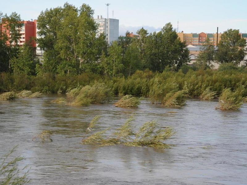 Природные ключи загрязнились после наводнения в Читинском районе – Роспотребнадзор