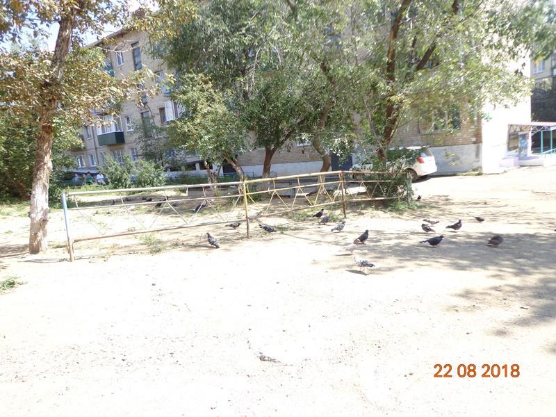 Заявление в прокуратуру подали жители ГРЭСа из-за невосстановленной территории после работ ТГК-14