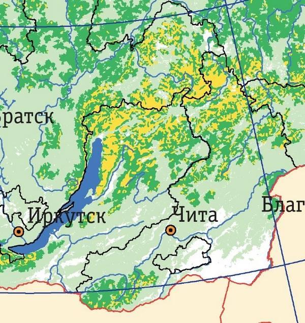 В Забайкалье осталось только два участка коренной тайги – профессор ЗабГУ