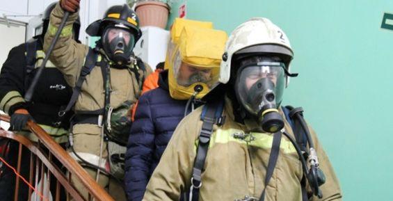 Из-за пожара на Камчатке эвакуировали младенца, трех кошек и собаку