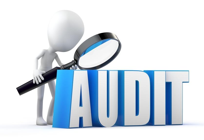 Налоговый аудит с подробным отчетом о проделанной работе