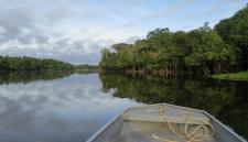 В лесах Амазонки нашли племя, не подозревающее о цивилизации