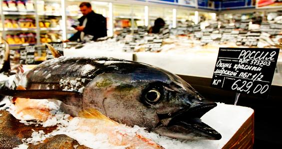 ВАРПЭ рассказала об экспорте российской рыбы в 2018 году