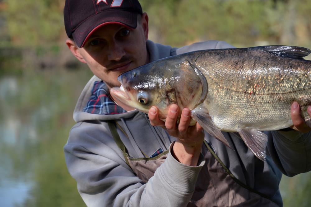 Все, что нужно для рыбалки