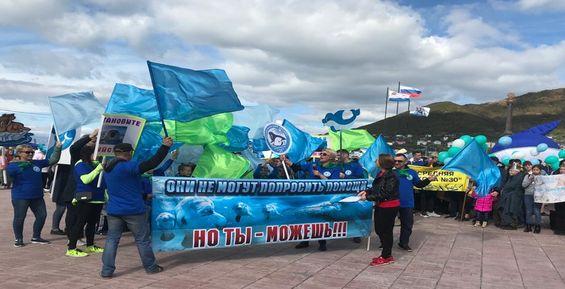 На Камчатке устроили шествие в защиту морских животных