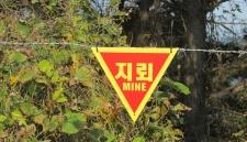 Для разминирования границы между КНДР и Южной Кореей нужно 200 лет