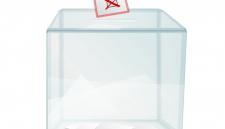 СМИ узнали о нюансах выборов в ДНР и ЛНР