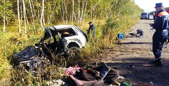 На Камчатке в лобовом столкновении «Нивы» и «Тойоты» погибли два человека (фото)