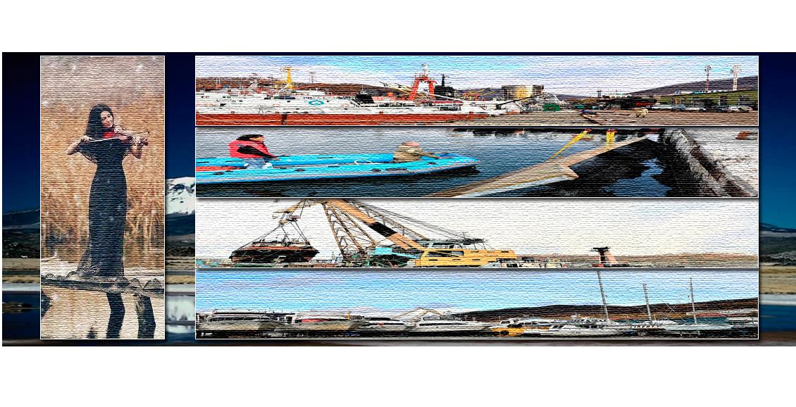 В Петропавловскую гавань возвращаются сивучи, а на её берегах ведется ремонт причалов и зданий