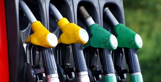 На Камчатке ФАС возбудила дело против крупнейшего продавца бензина