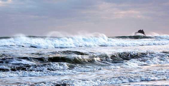 В Охотском море на японском судне человек выпал за борт
