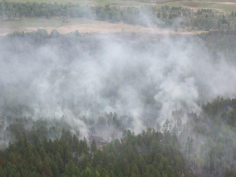 Валентик объяснил неготовность властей края к освоению денег на тушение пожаров