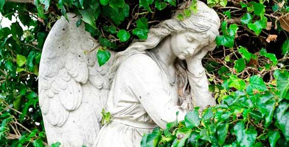 На Камчатке смертность вновь превысила рождаемость