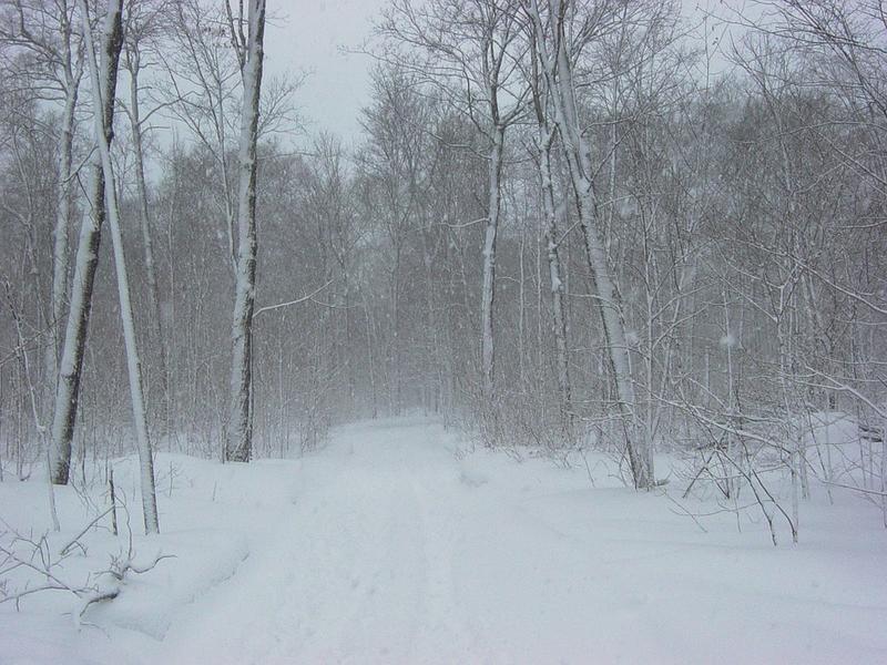 Штормовое предупреждение объявили из-за снега и метелей 2-3 декабря в Забайкалье