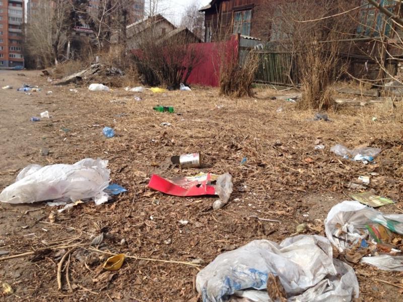 Жительница Забайкальска: Мусор на деревьях вместо украшений к Новому году