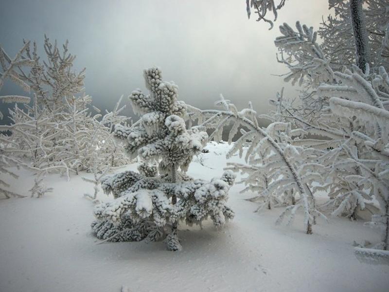 Температура воздуха в Бурятии 27 декабря понизится до -49, в Забайкалье - до -33 градусов
