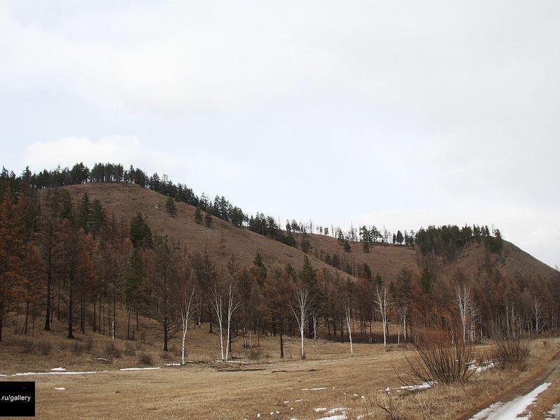 Добычу урана могут начать в Улётовском районе после 2025 года