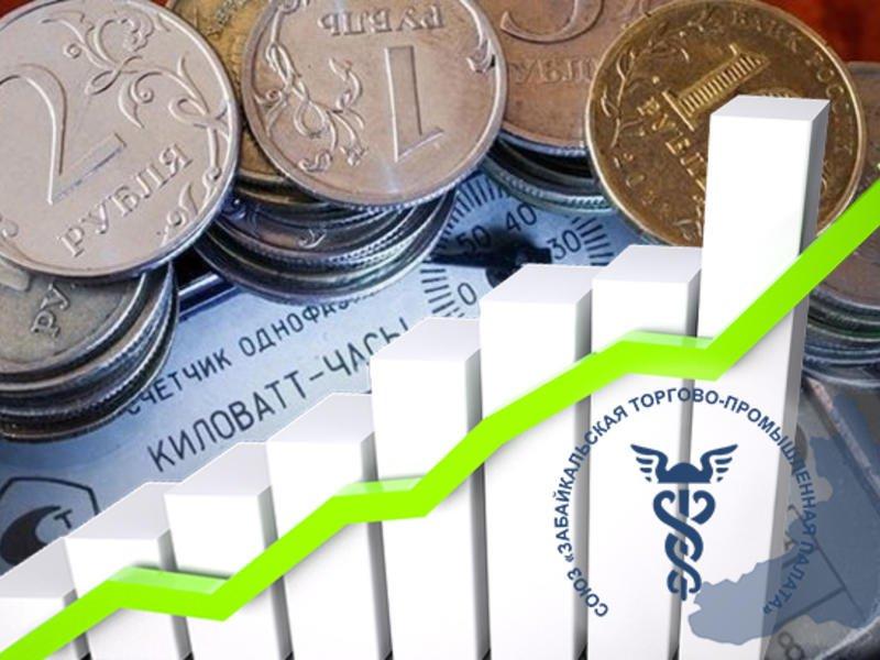 Предпринимателей Забайкалья просят рассказать о завышенных счетах за электроэнергию