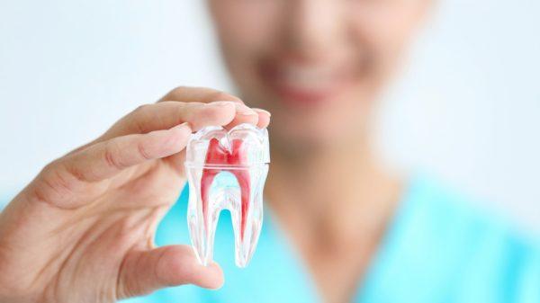 Лечение зубов в СПб недорого
